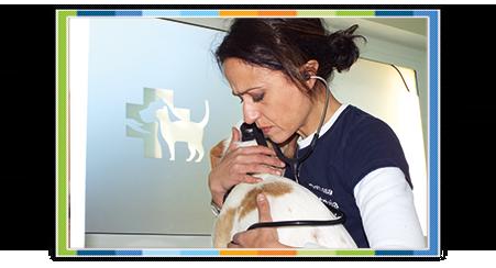 vaccinazioni animali