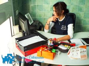 Clinica Veterinaria Dott.ssa Patrizia De Santis