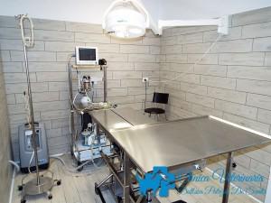 Clinica-Clinica Veterinaria Dott.ssa Patrizia De Santis-Dott.ssa-Patrizia-De-Santis-9